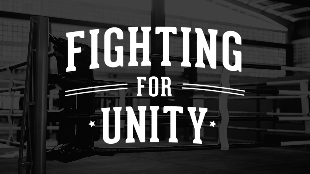 Fighting For Unity